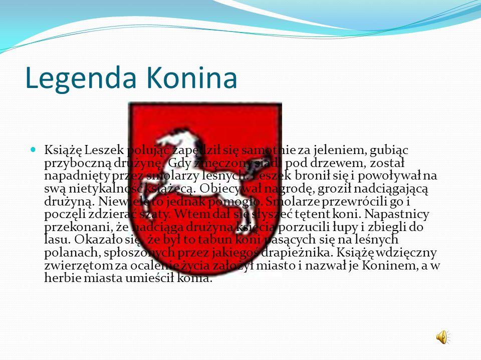 Konin – miasto na prawach powiatu w środkowej Polsce, we wschodniej części województwa wielkopolskiego, nad rzeką Wartą. Okolice Konina charakteryzuje