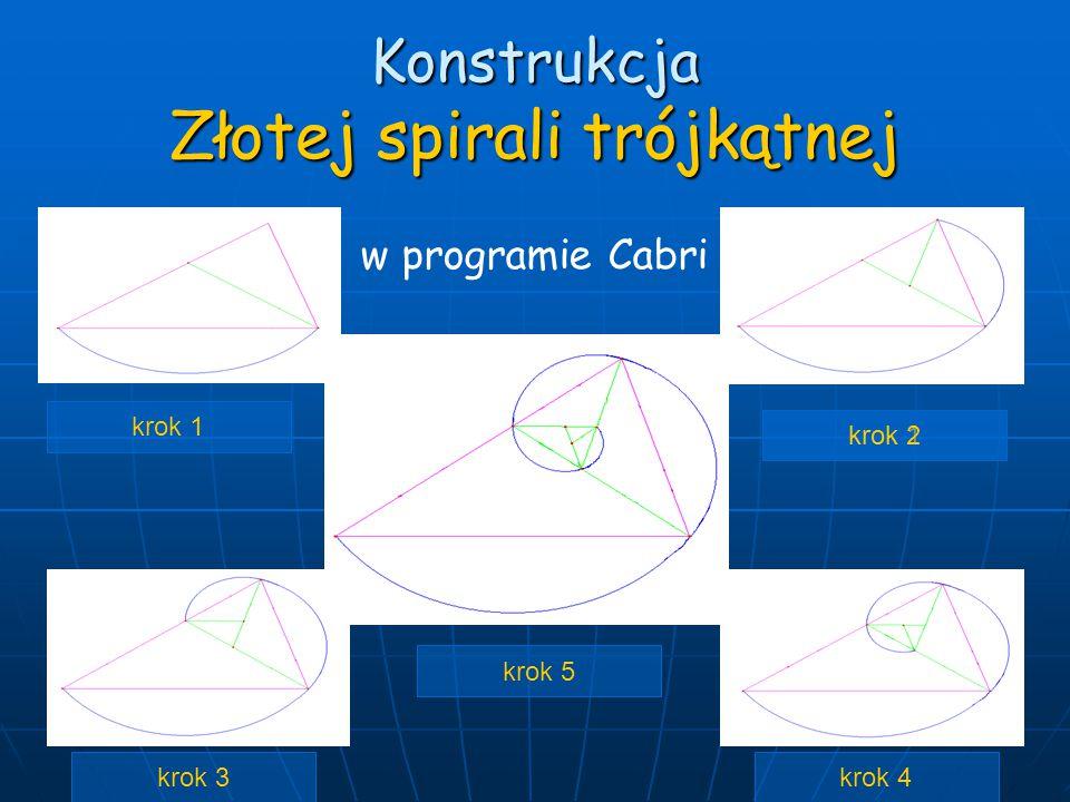 Konstrukcja Złotej spirali trójkątnej krok 1 krok 2 krok 4krok 3 krok 5 w programie Cabri