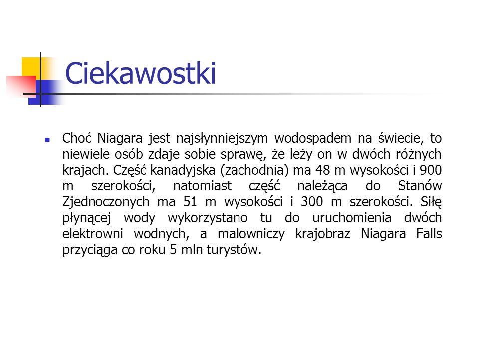 Bibliografia Internet (dane z dnia 28.01.2011 r.): www.wikipedia.pl www.geozone.pl