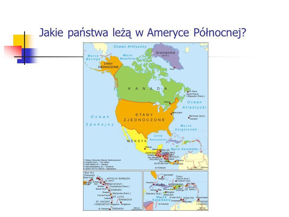 USA Państwo w Ameryce Północnej graniczące z Kanadą od północy, Meksykiem od południa, Oceanem Spokojnym od zachodu, Oceanem Arktycznym od północnego zachodu i Oceanem Atlantyckim od wschodu.