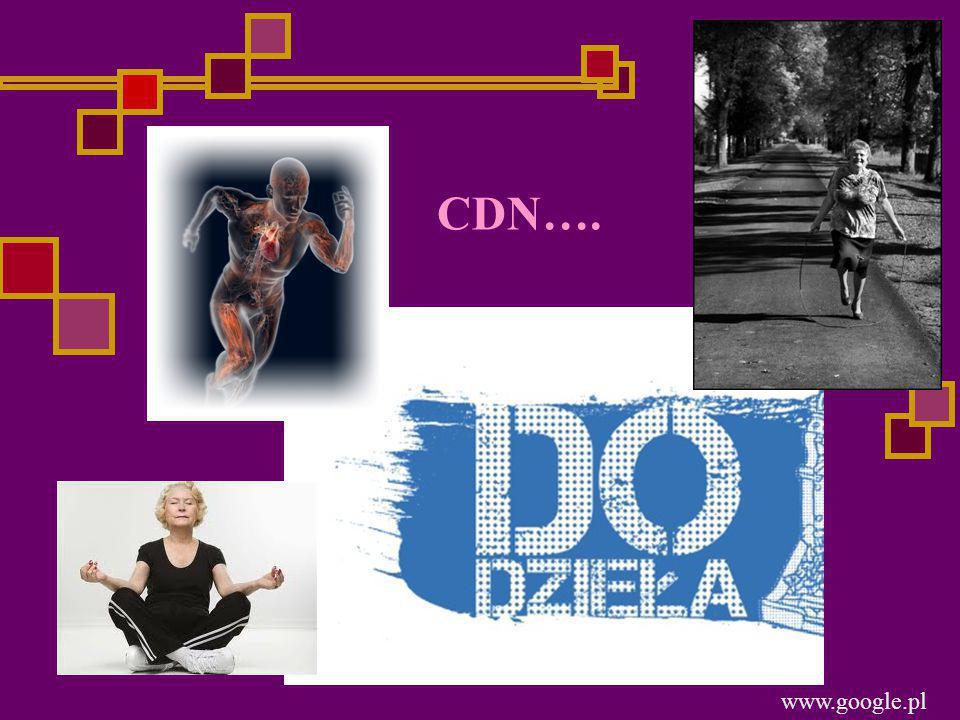 www.google.pl CDN….