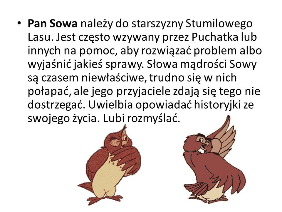 Pan Sowa należy do starszyzny Stumilowego Lasu. Jest często wzywany przez Puchatka lub innych na pomoc, aby rozwiązać problem albo wyjaśnić jakieś spr