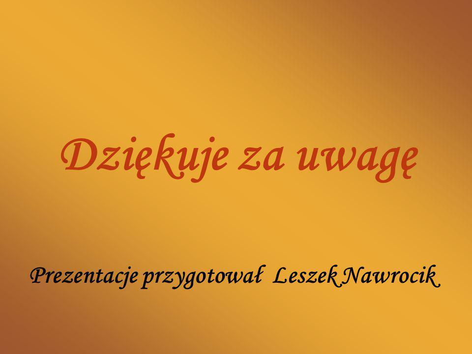 Dziękuje za uwagę Prezentacje przygotował Leszek Nawrocik