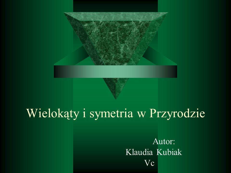 Wielokąty i symetria w Przyrodzie Autor: Klaudia Kubiak Vc