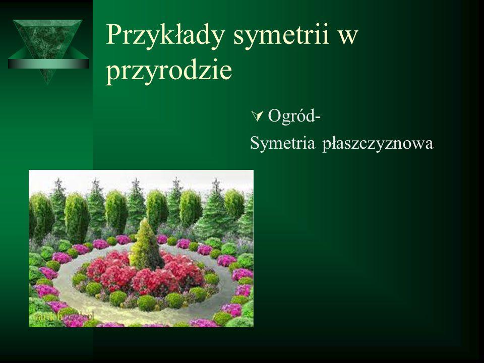Przykłady symetrii w przyrodzie  Ogród- Symetria płaszczyznowa