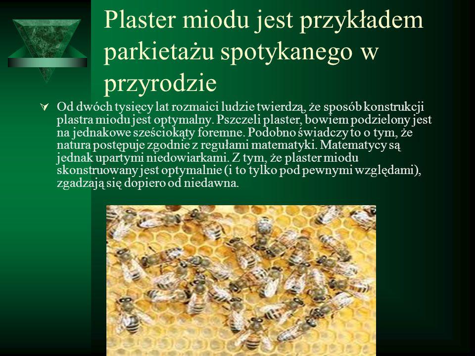 Plaster miodu jest przykładem parkietażu spotykanego w przyrodzie  Od dwóch tysięcy lat rozmaici ludzie twierdzą, że sposób konstrukcji plastra miodu