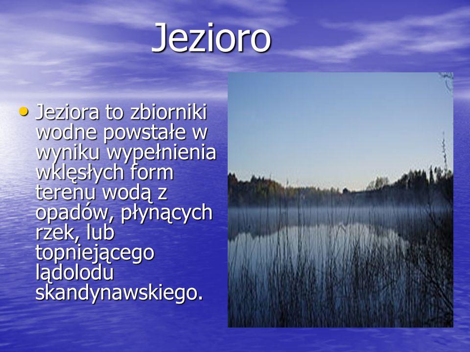 Rośliny słodkowodne Zdrojek, Zdrojek, Lobelia jeziorna, Lobelia jeziorna, Pałka wodna.
