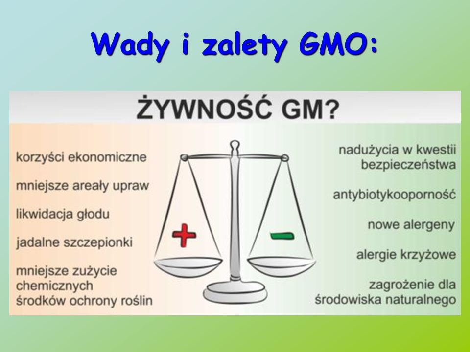 Wady i zalety GMO: