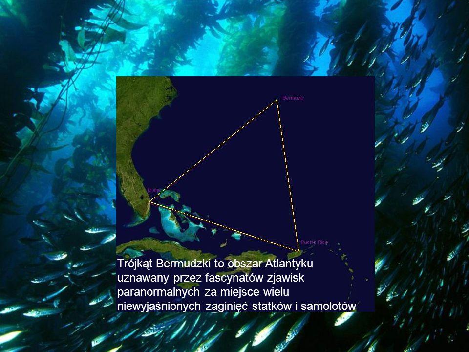 Trójkąt Bermudzki to obszar Atlantyku uznawany przez fascynatów zjawisk paranormalnych za miejsce wielu niewyjaśnionych zaginięć statków i samolotów