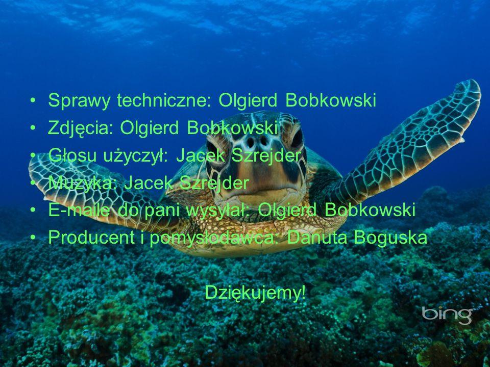 Sprawy techniczne: Olgierd Bobkowski Zdjęcia: Olgierd Bobkowski Głosu użyczył: Jacek Szrejder Muzyka: Jacek Szrejder E-maile do pani wysyłał: Olgierd