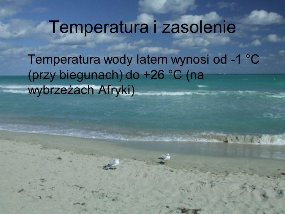 Temperatura i zasolenie Temperatura wody latem wynosi od -1 °C (przy biegunach) do +26 °C (na wybrzeżach Afryki)