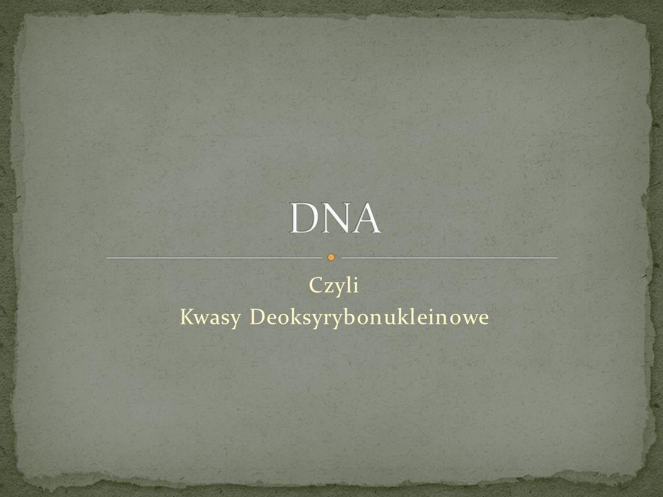 Kwas deoksyrybonukleinowy Kwas deoksyrybonukleinowy w skrócie DNA jest to należący do kwasów nukleinowych wielkocząsteczkowy organiczny związek chemiczny, który występuje w chromosomach i pełni rolę nośnika informacji genetycznej organizmów żywych.