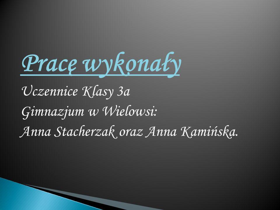Pracę wykonały Uczennice Klasy 3a Gimnazjum w Wielowsi: Anna Stacherzak oraz Anna Kamińska.