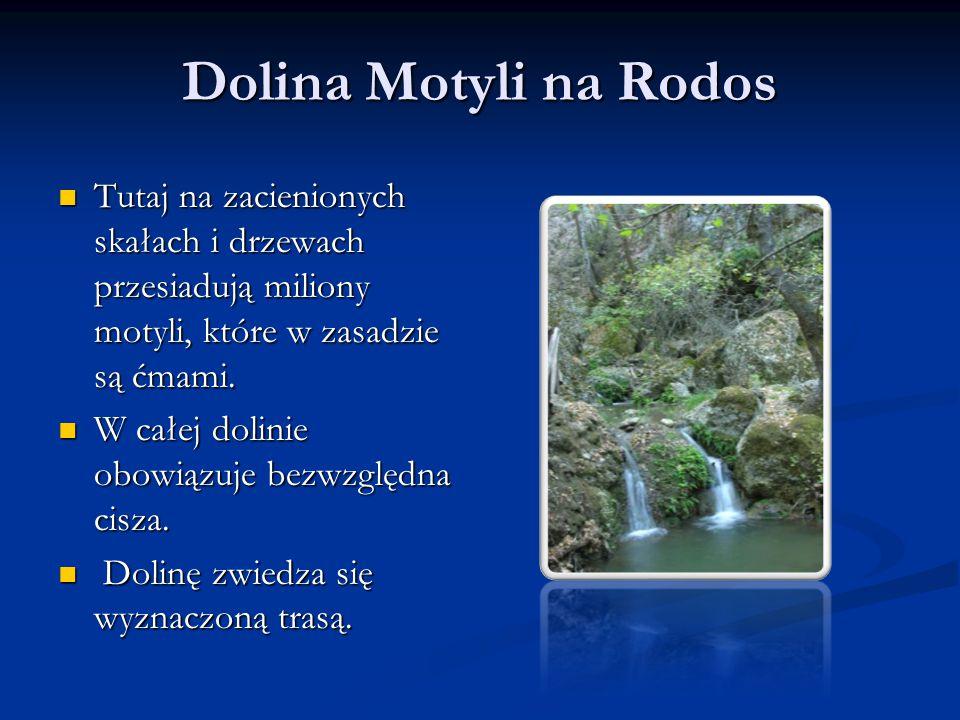 Dolina Motyli na Rodos Tutaj na zacienionych skałach i drzewach przesiadują miliony motyli, które w zasadzie są ćmami. Tutaj na zacienionych skałach i