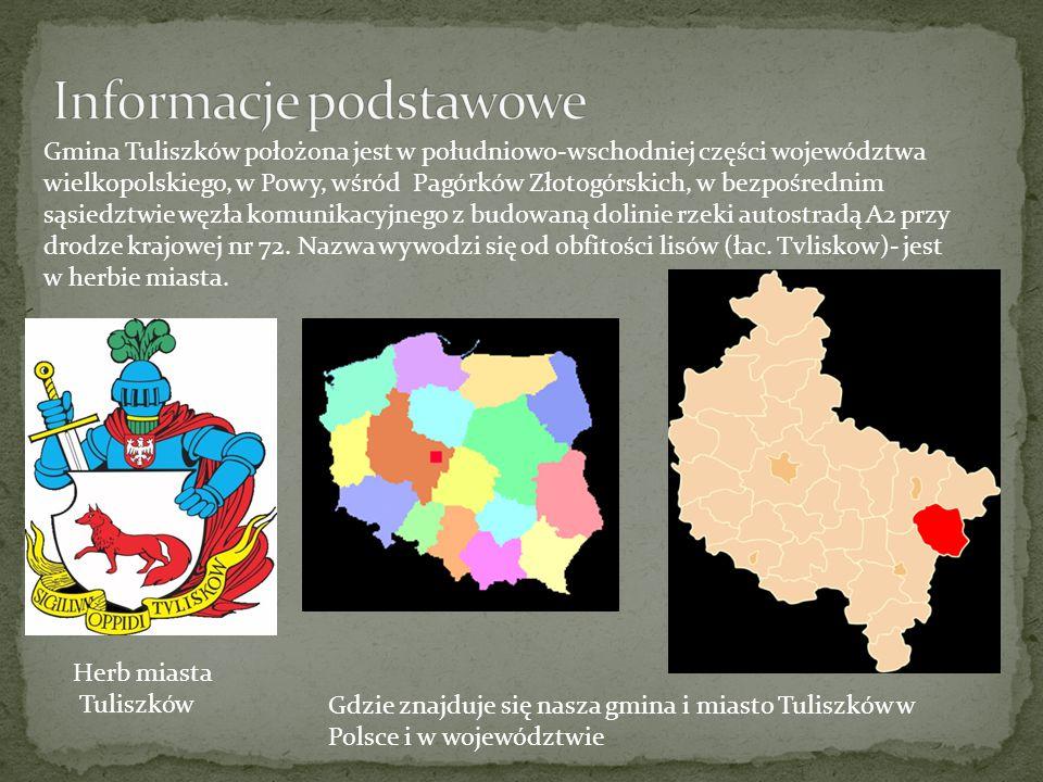Gmina Tuliszków położona jest w południowo-wschodniej części województwa wielkopolskiego, w Powy, wśród Pagórków Złotogórskich, w bezpośrednim sąsiedz