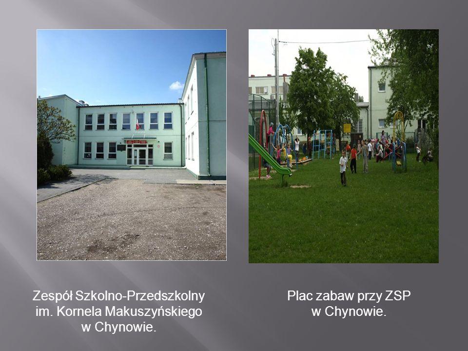 PSP im.Poetów Polskich w Zalesiu PSP im. Jana Brzechwy w Sułkowicach PSP im.