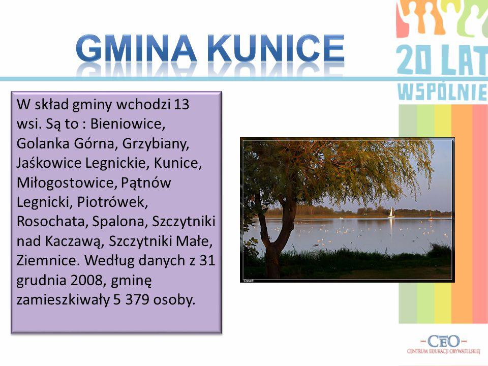 W skład gminy wchodzi 13 wsi.