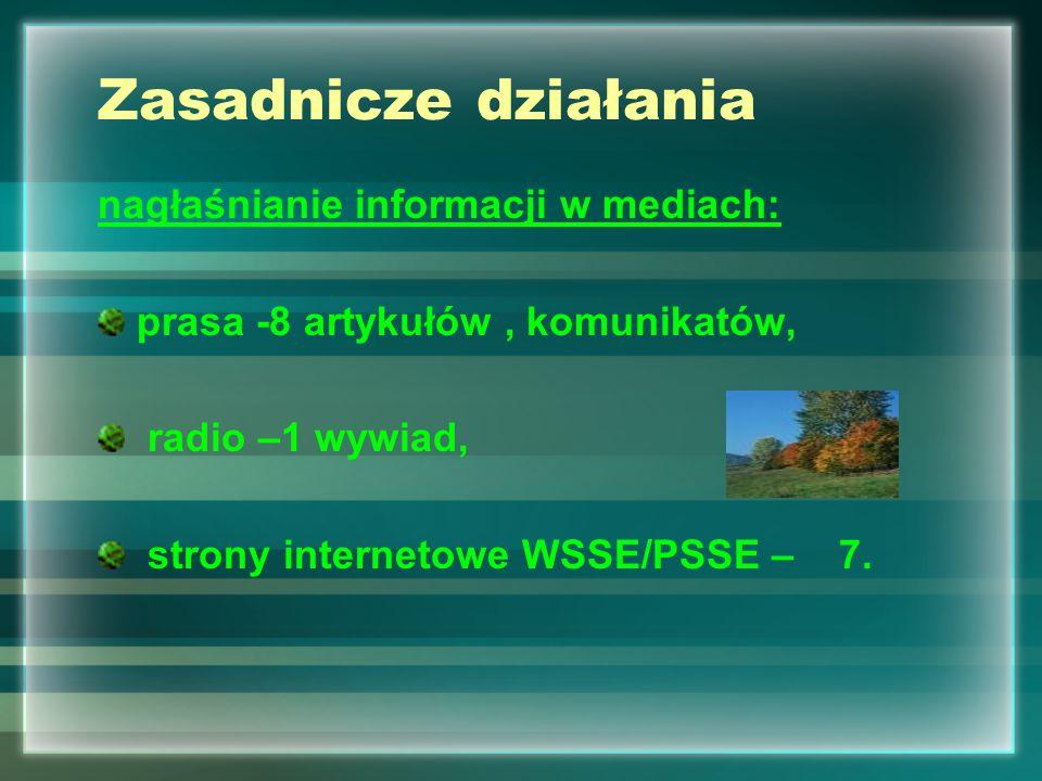 Zasadnicze działania nagłaśnianie informacji w mediach: prasa -8 artykułów, komunikatów, radio –1 wywiad, strony internetowe WSSE/PSSE – 7.