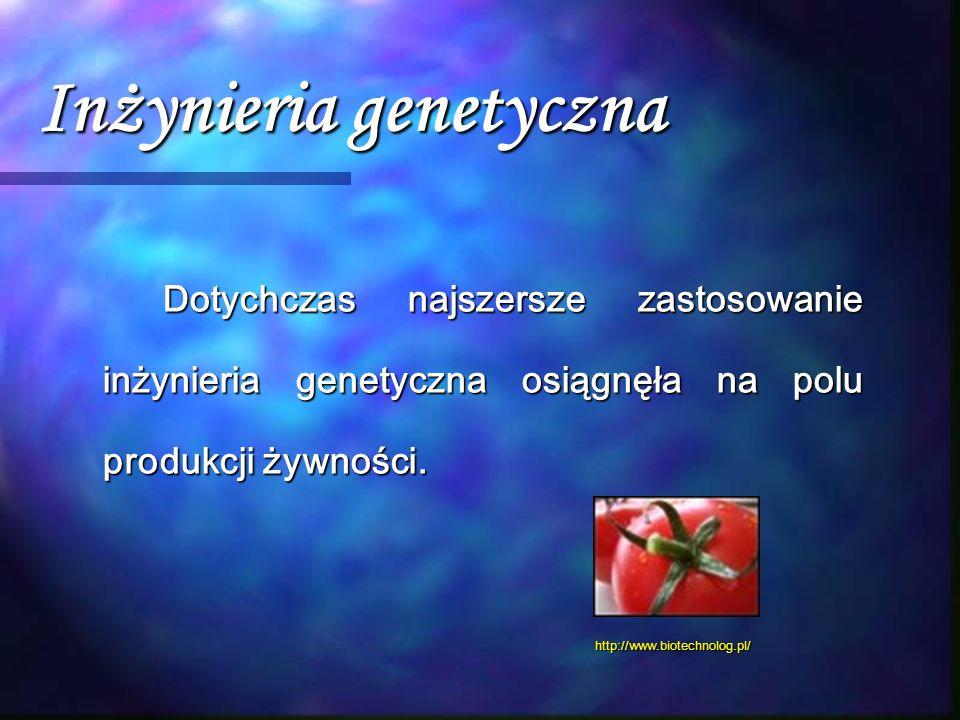 Inżynieria genetyczna Dotychczas najszersze zastosowanie inżynieria genetyczna osiągnęła na polu produkcji żywności. http://www.biotechnolog.pl/