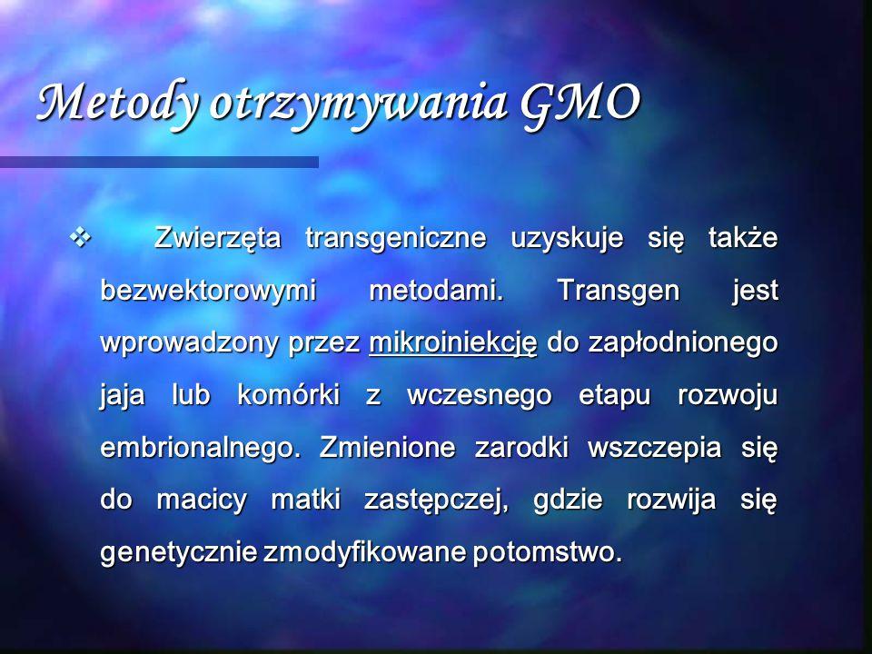 Metody otrzymywania GMO  Zwierzęta transgeniczne uzyskuje się także bezwektorowymi metodami. Transgen jest wprowadzony przez mikroiniekcję do zapłodn