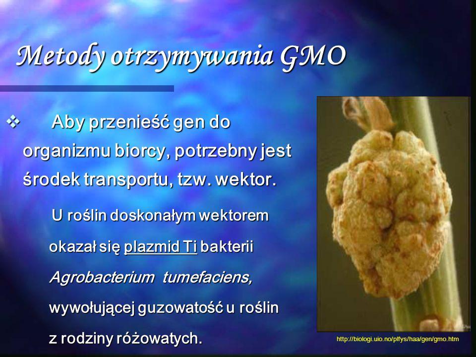 Metody otrzymywania GMO  Aby przenieść gen do organizmu biorcy, potrzebny jest środek transportu, tzw. wektor. U roślin doskonałym wektorem okazał si
