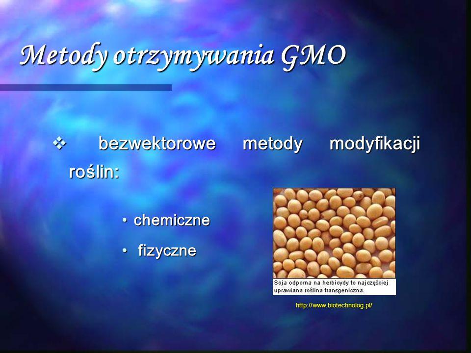 Metody otrzymywania GMO  bezwektorowe metody modyfikacji roślin: chemicznechemiczne fizyczne fizyczne http://www.biotechnolog.pl/