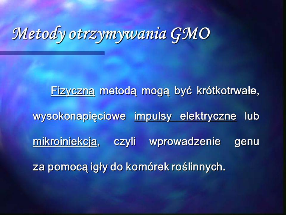 Metody otrzymywania GMO Fizyczną metodą mogą być krótkotrwałe, wysokonapięciowe impulsy elektryczne lub mikroiniekcja, czyli wprowadzenie genu za pomo