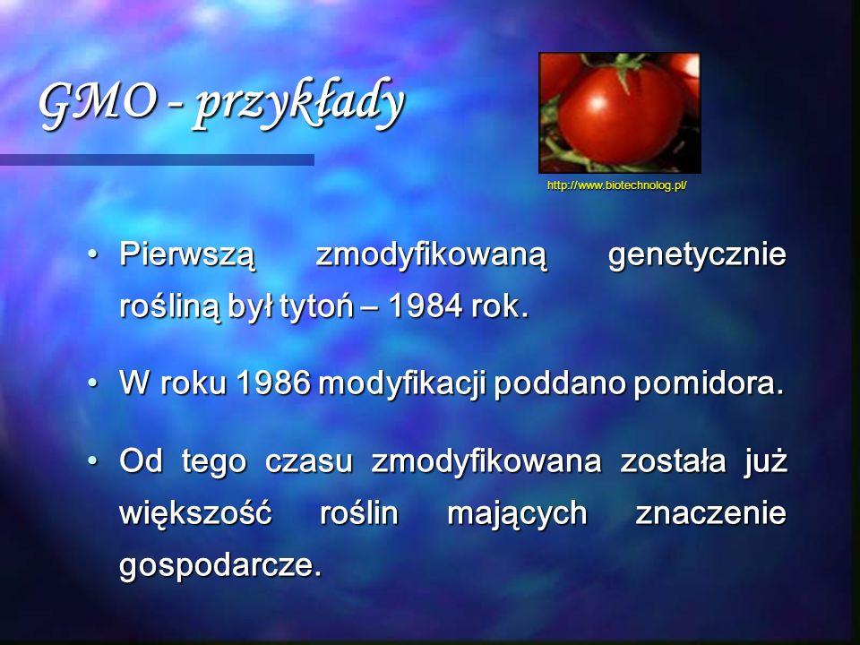 GMO - przykłady Pierwszą zmodyfikowaną genetycznie rośliną był tytoń – 1984 rok.Pierwszą zmodyfikowaną genetycznie rośliną był tytoń – 1984 rok. W rok