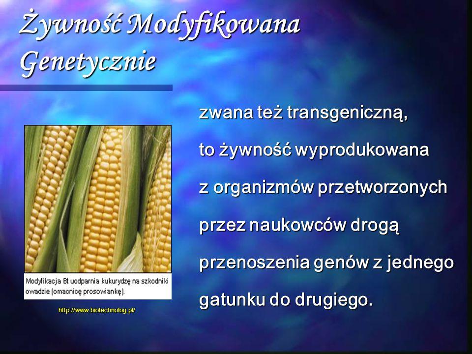 Żywność Modyfikowana Genetycznie zwana też transgeniczną, to żywność wyprodukowana z organizmów przetworzonych przez naukowców drogą przenoszenia genó
