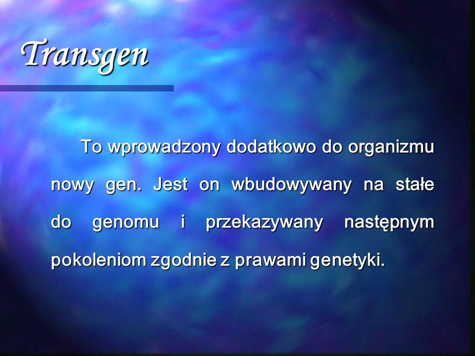 Transgen To wprowadzony dodatkowo do organizmu nowy gen. Jest on wbudowywany na stałe do genomu i przekazywany następnym pokoleniom zgodnie z prawami