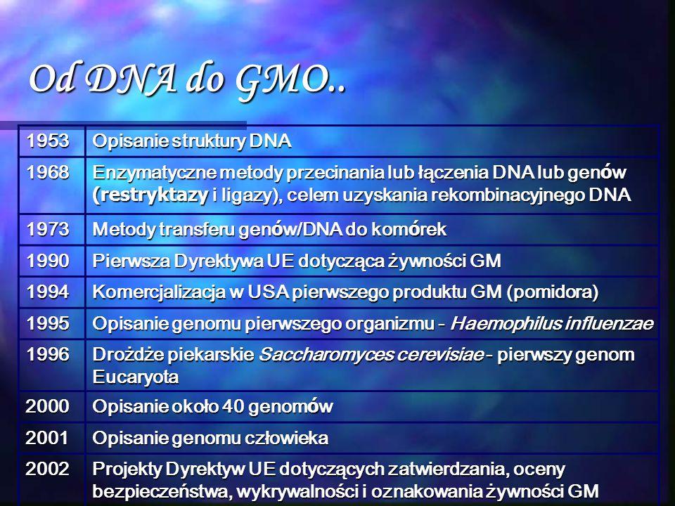 Od DNA do GMO.. 1953 Opisanie struktury DNA 1968 Enzymatyczne metody przecinania lub łączenia DNA lub gen ó w (restryktazy i ligazy), celem uzyskania