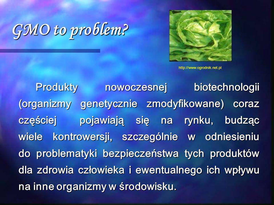 GMO to problem? Produkty nowoczesnej biotechnologii (organizmy genetycznie zmodyfikowane) coraz częściej pojawiają się na rynku, budząc wiele kontrowe