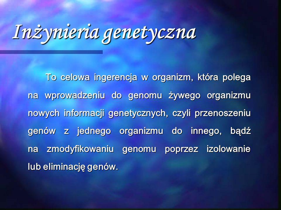 Inżynieria genetyczna To celowa ingerencja w organizm, która polega na wprowadzeniu do genomu żywego organizmu nowych informacji genetycznych, czyli p