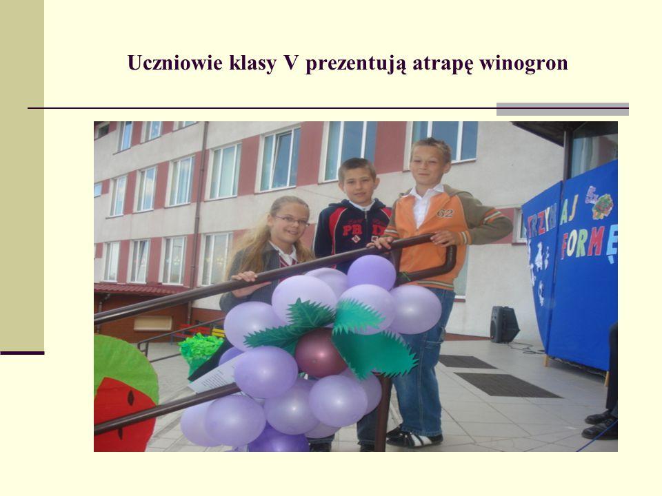 Uczniowie klasy V prezentują atrapę winogron