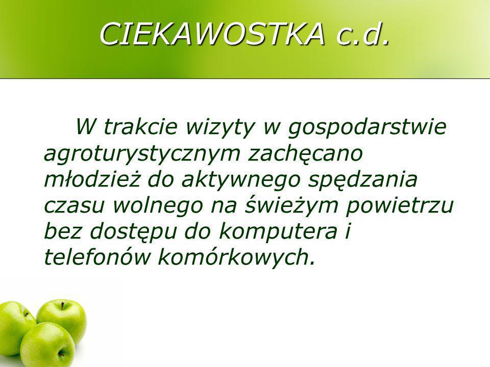 Żywność W gimnazjum w Grabowie oraz w gimnazjum Centrum Kształcenia i Wychowania OHP Gołdap przeprowadzono międzyszkolną degustację sałatek i surówek.