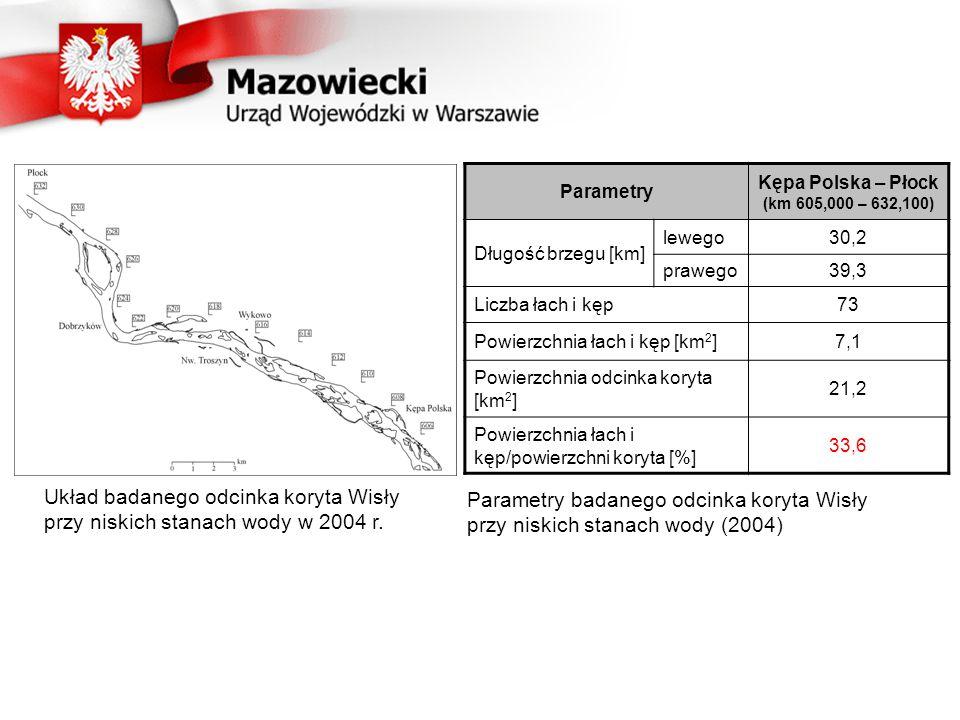 Układ badanego odcinka koryta Wisły przy niskich stanach wody w 2004 r.