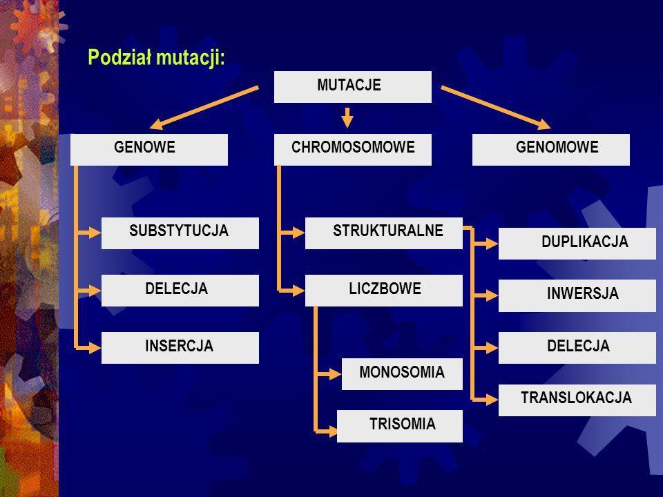 Podział mutacji: GENOWEGENOMOWECHROMOSOMOWE LICZBOWE INSERCJA DELECJA SUBSTYTUCJASTRUKTURALNE INWERSJA DUPLIKACJA TRISOMIA MONOSOMIA TRANSLOKACJA DELE