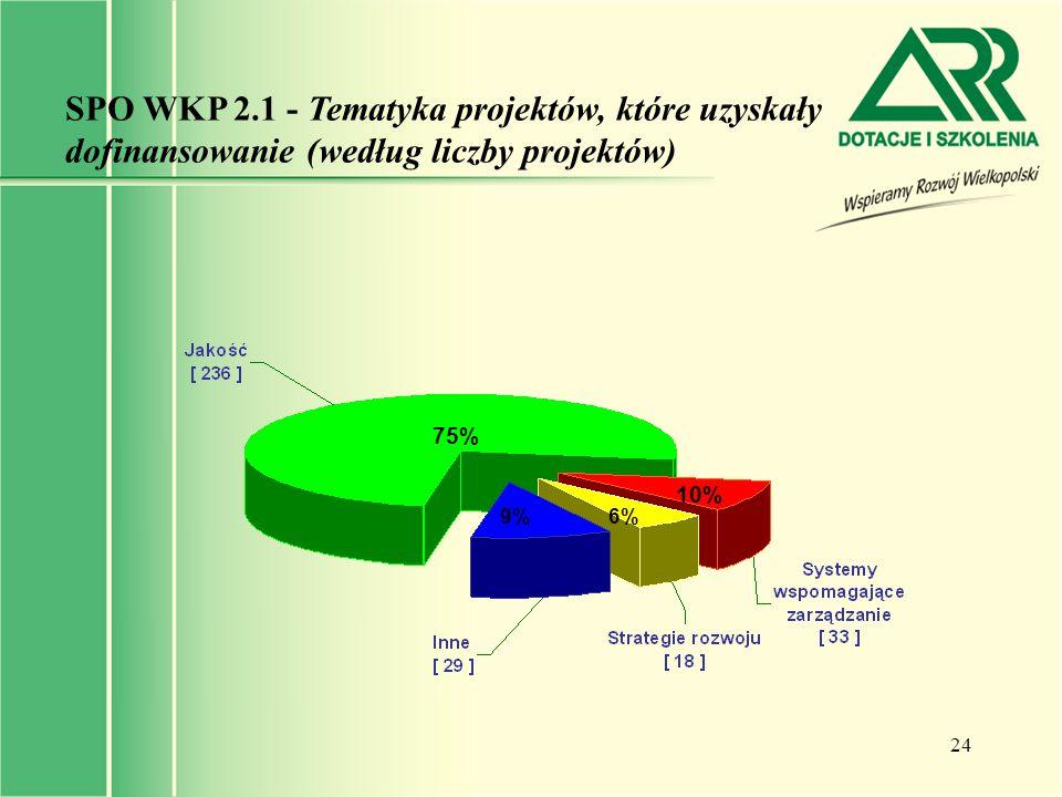 24 SPO WKP 2.1 - Tematyka projektów, które uzyskały dofinansowanie (według liczby projektów) 75% 10% 6%9%