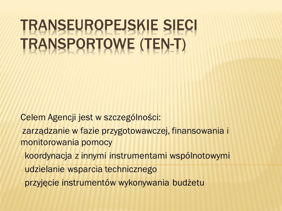 Celem Agencji jest w szczególności: - zarządzanie w fazie przygotowawczej, finansowania i monitorowania pomocy - koordynacja z innymi instrumentami ws