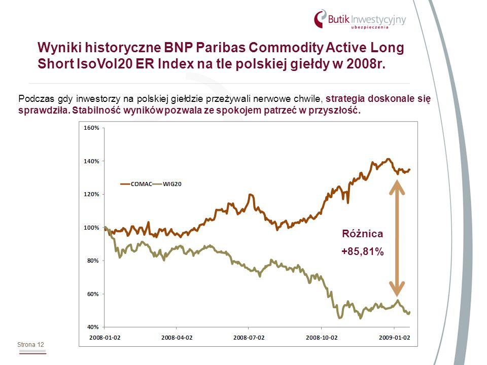 Strona 12 Wyniki historyczne BNP Paribas Commodity Active Long Short IsoVol20 ER Index na tle polskiej giełdy w 2008r.
