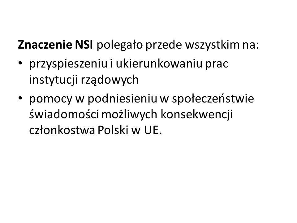 Znaczenie NSI polegało przede wszystkim na: przyspieszeniu i ukierunkowaniu prac instytucji rządowych pomocy w podniesieniu w społeczeństwie świadomości możliwych konsekwencji członkostwa Polski w UE.