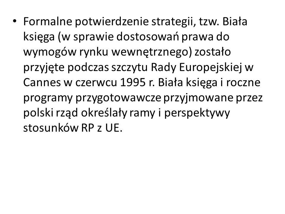 Formalne potwierdzenie strategii, tzw. Biała księga (w sprawie dostosowań prawa do wymogów rynku wewnętrznego) zostało przyjęte podczas szczytu Rady E