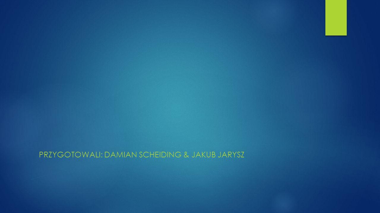 PRZYGOTOWALI: DAMIAN SCHEIDING & JAKUB JARYSZ