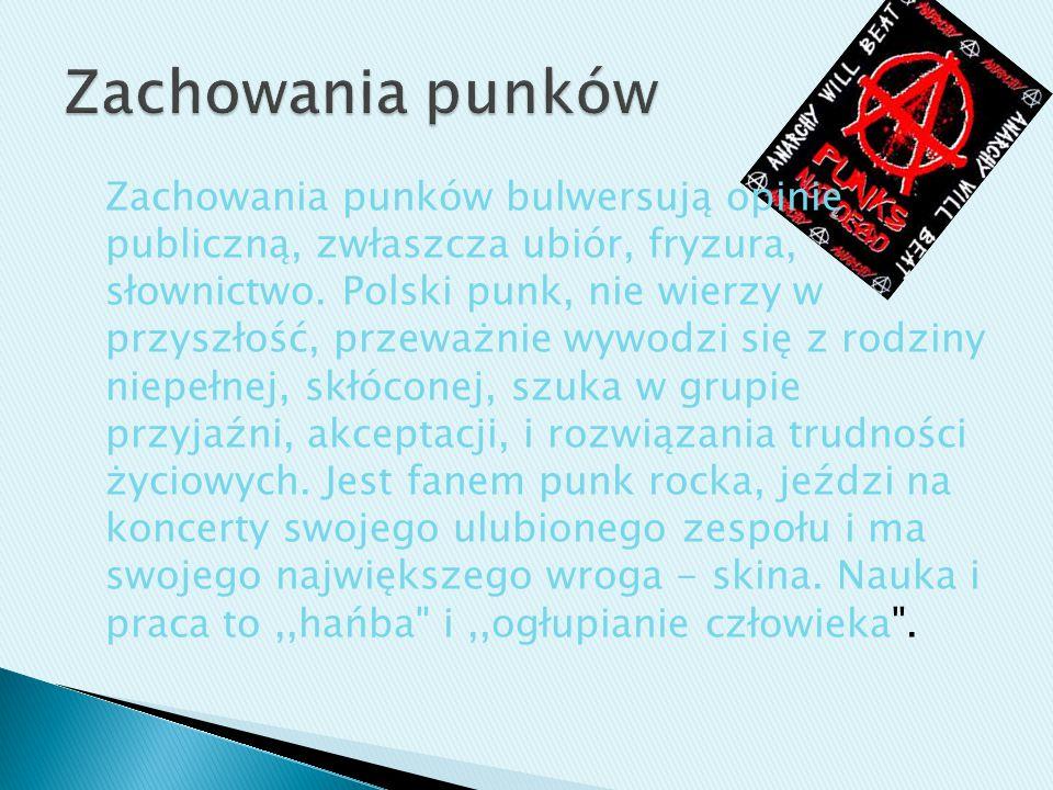 Zachowania punków bulwersują opinię publiczną, zwłaszcza ubiór, fryzura, słownictwo. Polski punk, nie wierzy w przyszłość, przeważnie wywodzi się z ro
