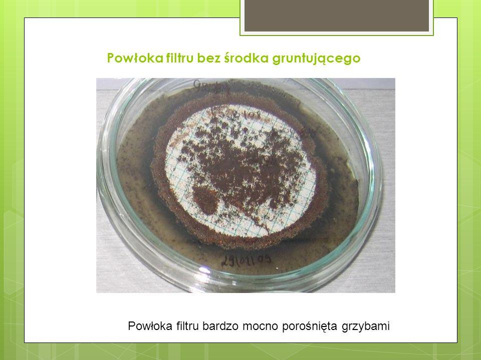 Powłoka filtru bez środka gruntującego Powłoka filtru bardzo mocno porośnięta grzybami