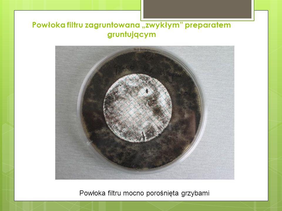 """Powłoka filtru zagruntowana """"zwykłym preparatem gruntującym Powłoka filtru mocno porośnięta grzybami"""