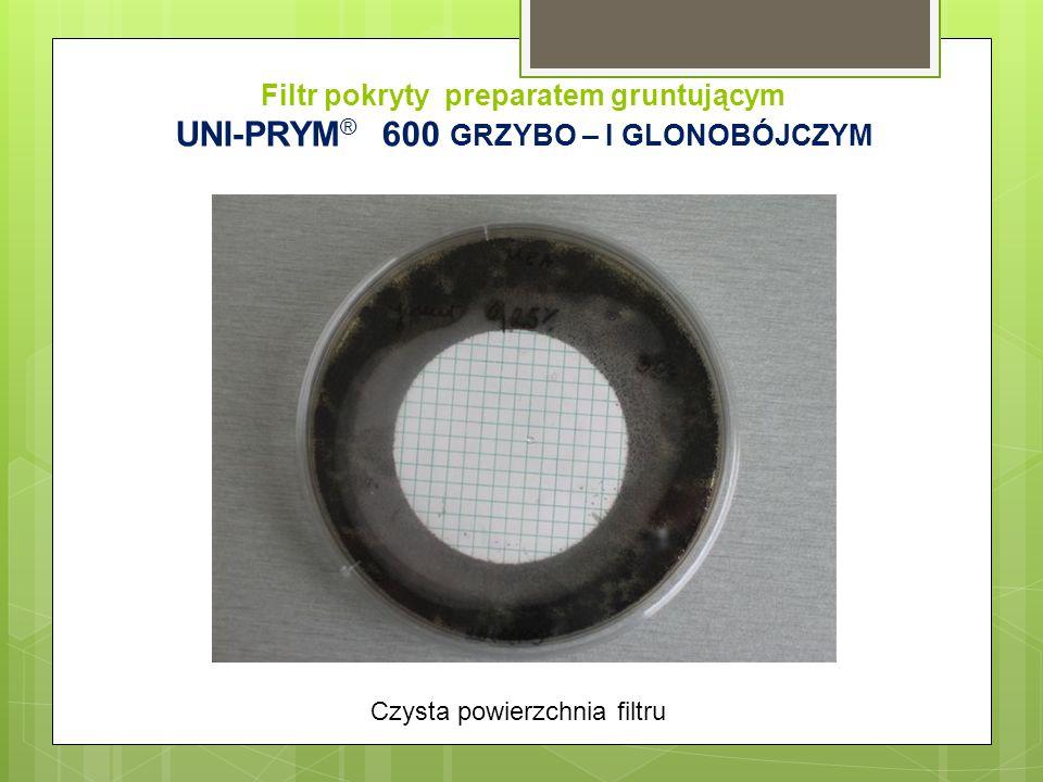 Filtr pokryty preparatem gruntującym UNI-PRYM ® 600 GRZYBO – I GLONOBÓJCZYM Czysta powierzchnia filtru