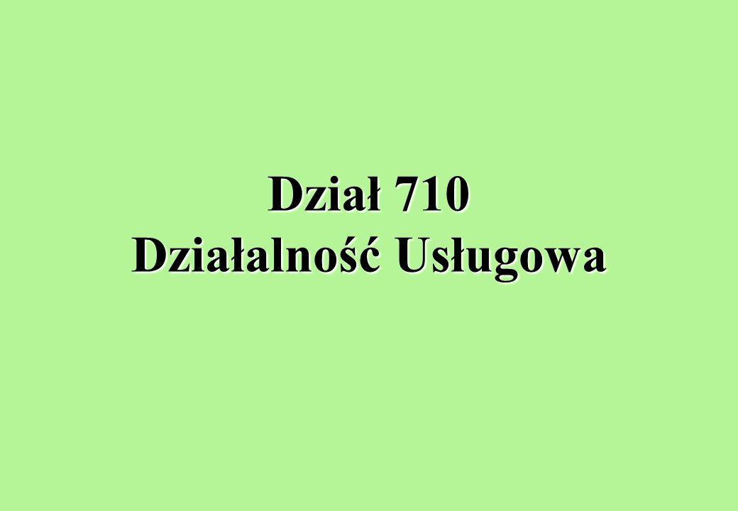 Dział 710 Działalność Usługowa