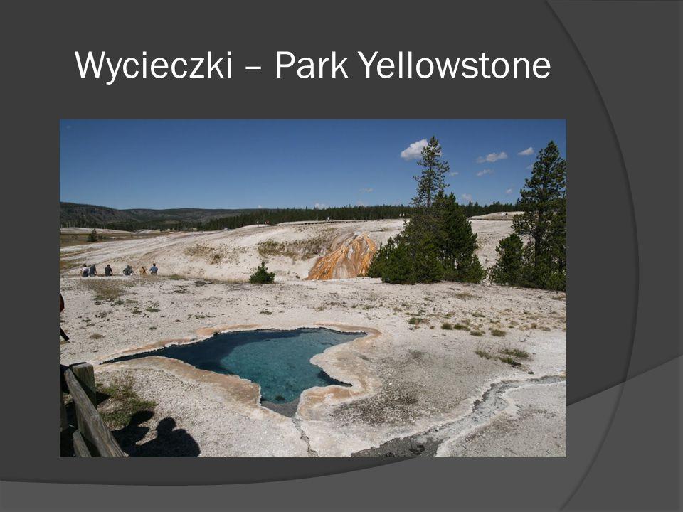 Wycieczki – Park Yellowstone