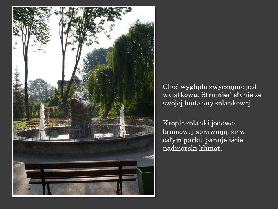 Choć wygląda zwyczajnie jest wyjątkowa. Strumień słynie ze swojej fontanny solankowej. Krople solanki jodowo- bromowej sprawiają, że w całym parku pan